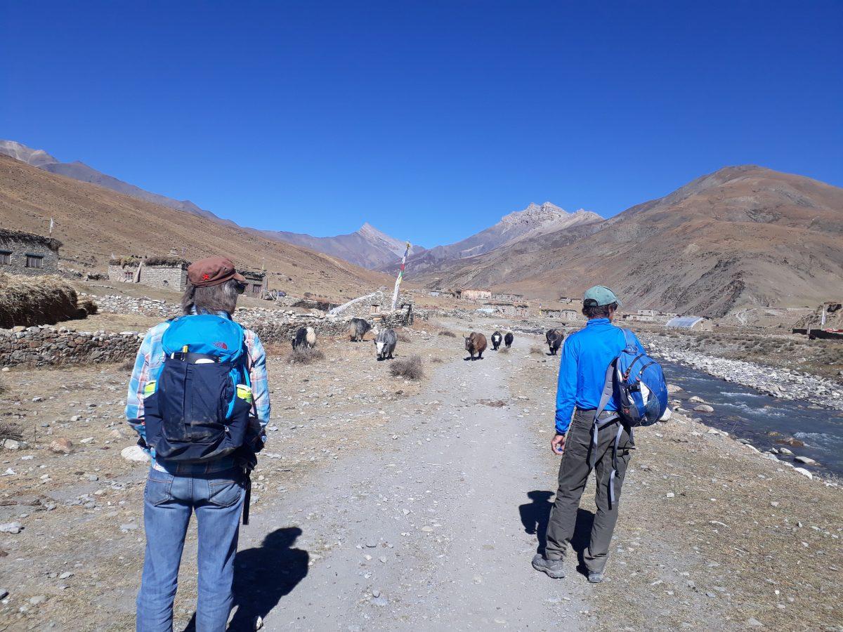 Trekking in Upper Dolpo
