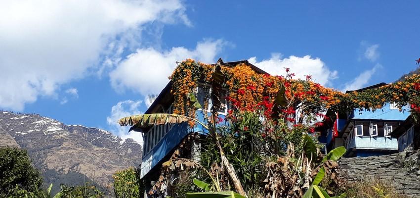 Mardi Himal D01